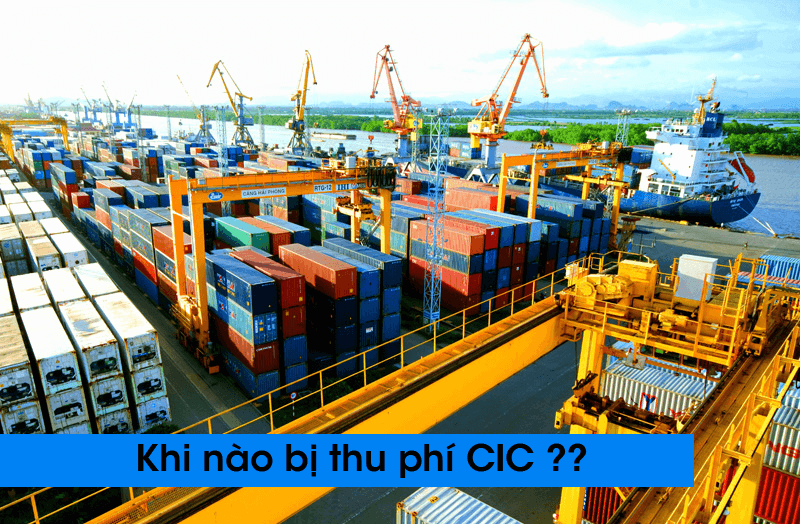 Phí CIC là gì?Khi nào bị tính phí CIC? – giamcanlamdep.com.vn